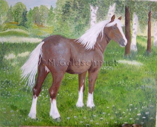 Häst från Rättvik
